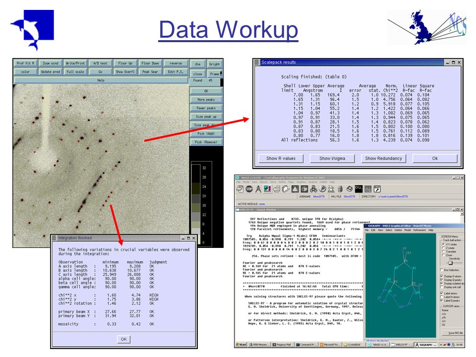 Data Workup