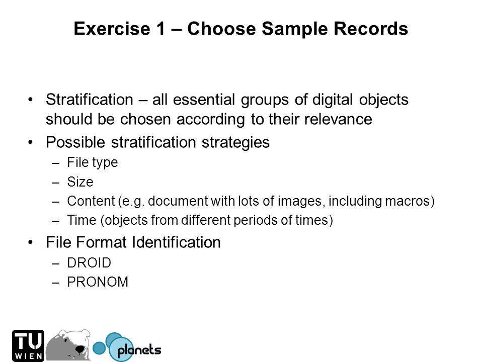 Exercise 1 – Choose Sample Records Stratification – all essential groups of digital objects should be chosen according to their relevance Possible str
