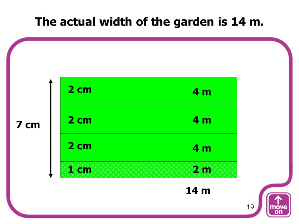 The actual width of the garden is 14 m. 7 cm 2 cm 4 m 1 cm2 m 14 m 19