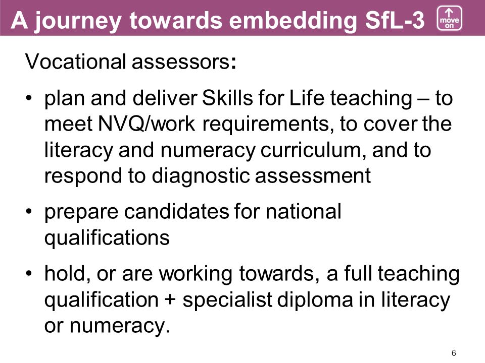 6 A journey towards embedding SfL-3 Vocational assessors: plan and deliver Skills for Life teaching – to meet NVQ/work requirements, to cover the lite