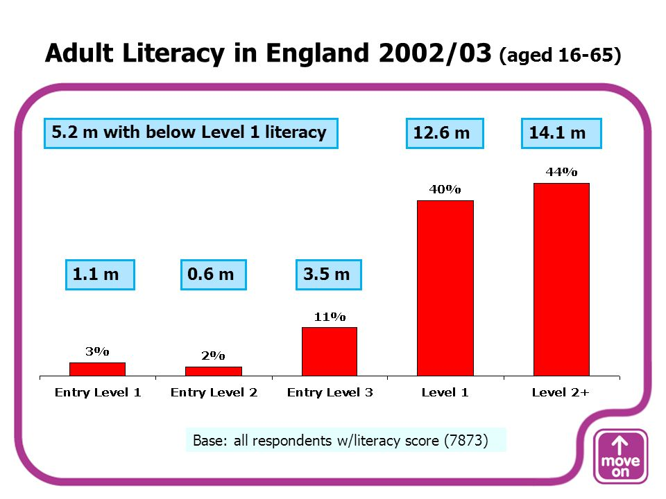 Adult Literacy in England 2002/03 (aged 16-65) Base: all respondents w/literacy score (7873) 1.1 m0.6 m3.5 m 12.6 m14.1 m5.2 m with below Level 1 literacy