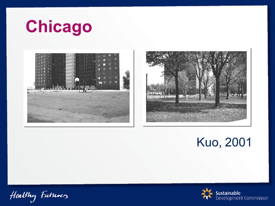 Chicago Kuo, 2001
