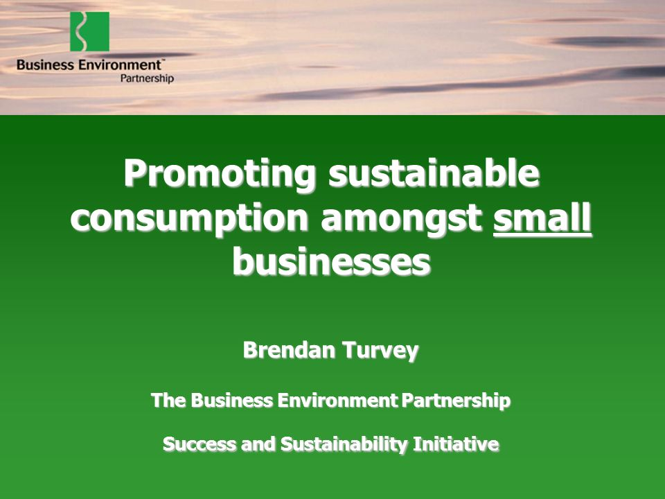 Promoting sustainable consumption amongst small businesses Brendan Turvey The Business Environment Partnership Success and Sustainability Initiative