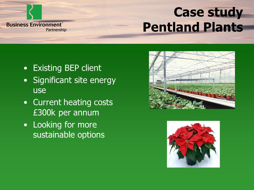 Case study Pentland Plants Existing BEP client Significant site energy use Current heating costs £300k per annum Looking for more sustainable options