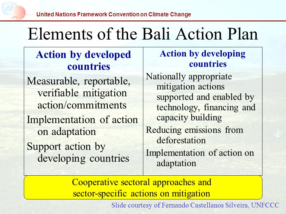 United Nations Framework Convention on Climate Change Elements of the Bali Action Plan Action by developed countries Measurable, reportable, verifiabl