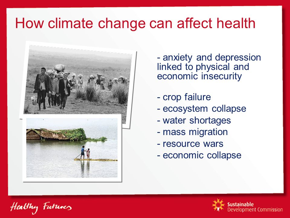 How climate change can affect health - anxiety and depression linked to physical and economic insecurity - crop failure - ecosystem collapse - water shortages - mass migration - resource wars - economic collapse