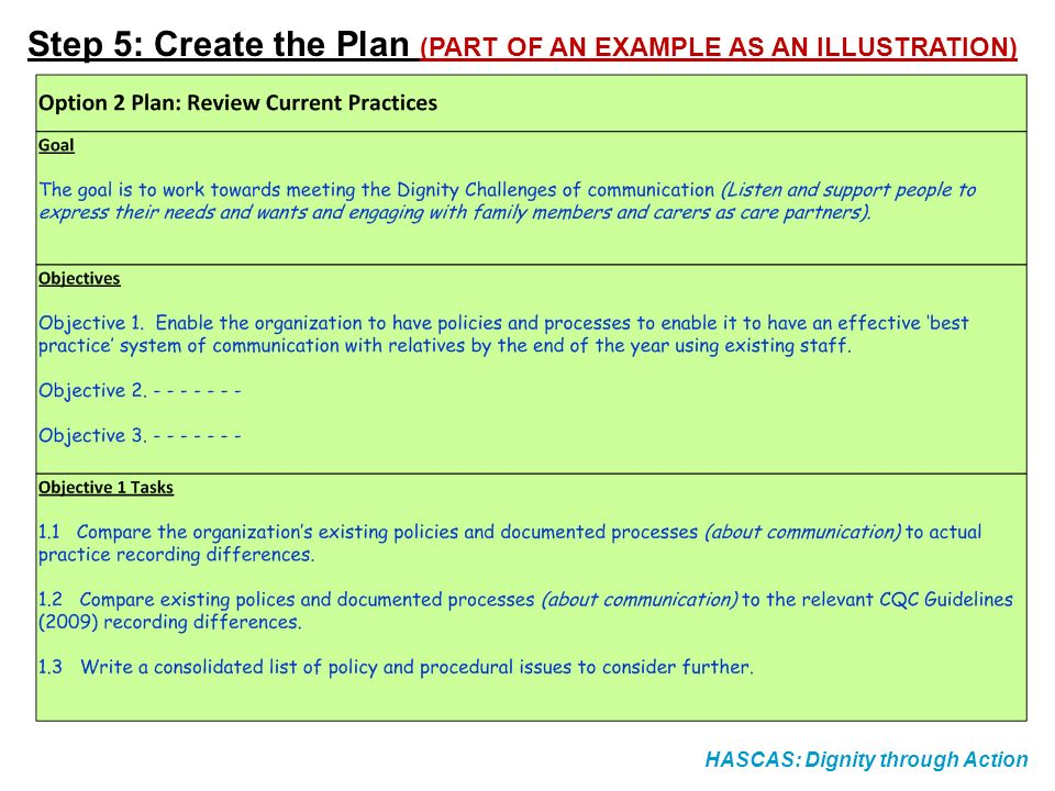 HASCAS: Dignity through Action Step 5: Create the Plan (PART OF AN EXAMPLE AS AN ILLUSTRATION)