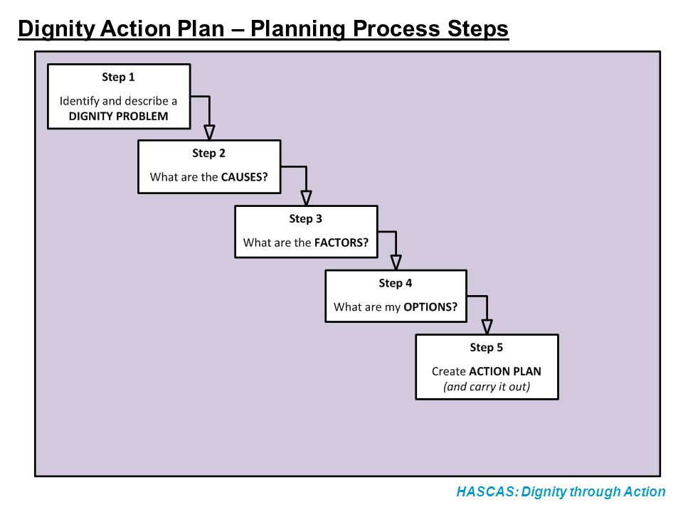 HASCAS: Dignity through Action Action Planning Step 6: Create the Plan – Evaluation Arrangements How are you going to evaluate the success of your Action Plan.