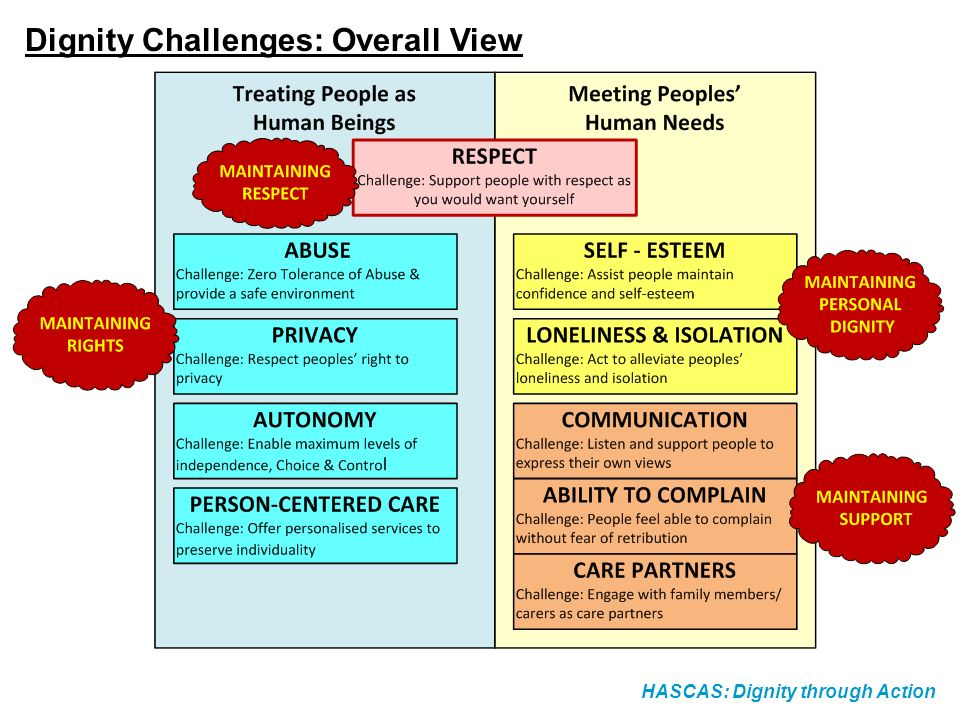 HASCAS: Dignity through Action Dignity Challenges: Overall View