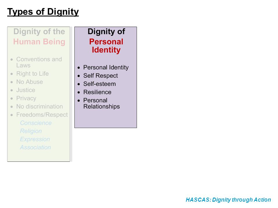 HASCAS: Dignity through Action Types of Dignity
