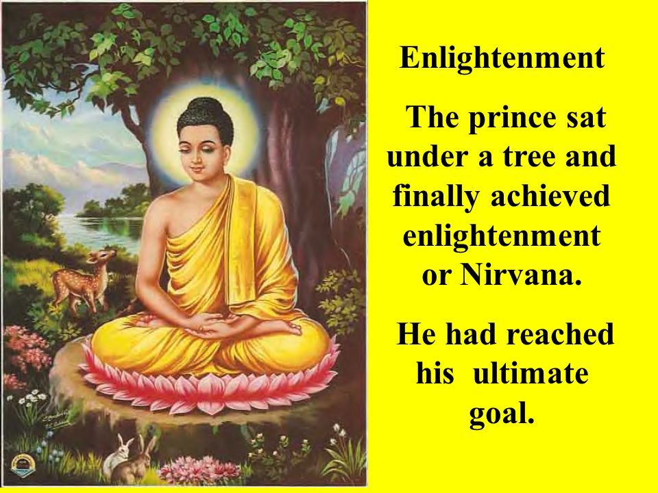 Enlightenment The prince sat under a tree and finally achieved enlightenment or Nirvana. He had reached his ultimate goal.