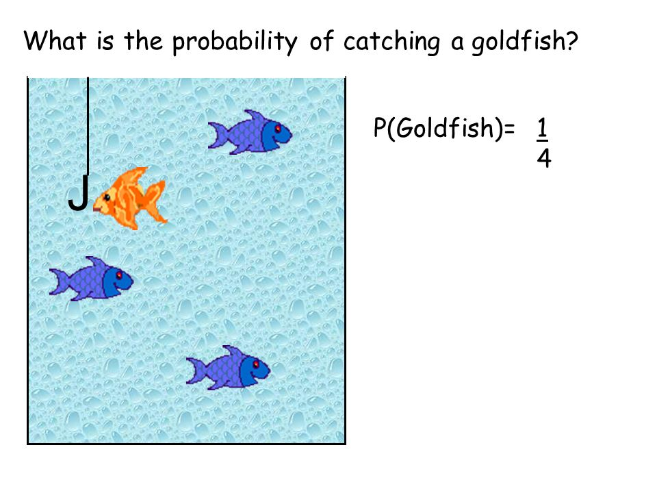 What is the probability of catching a goldfish J P(Goldfish)=1414