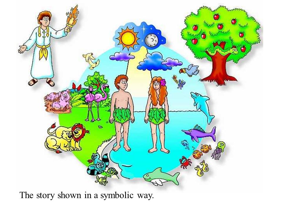 Stewardship Adam & Eve are instructed to be stewards of creation.