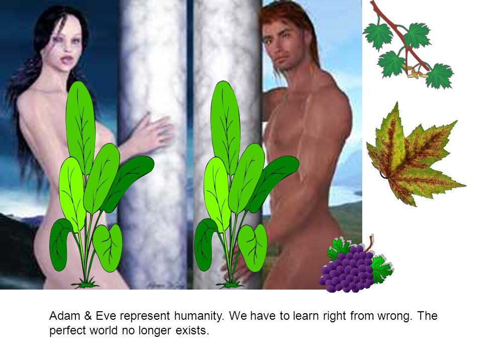 What was Adam capable of ? You need to watch the separate presentation on Adam & Eve here.