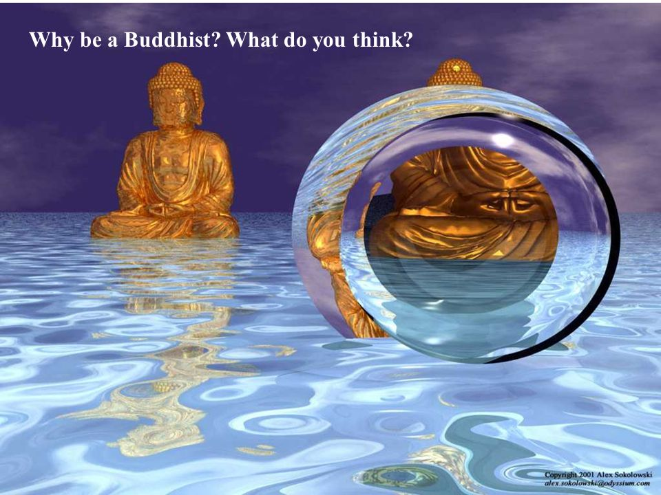 Why be a Buddhist? What do you think?