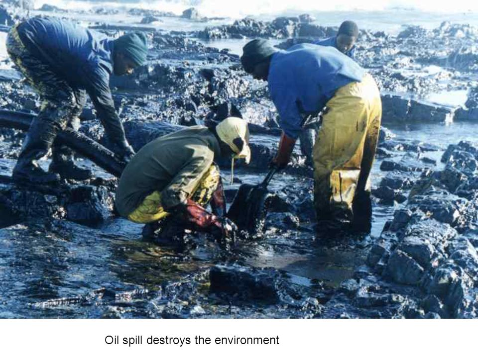 Oil spill destroys the environment