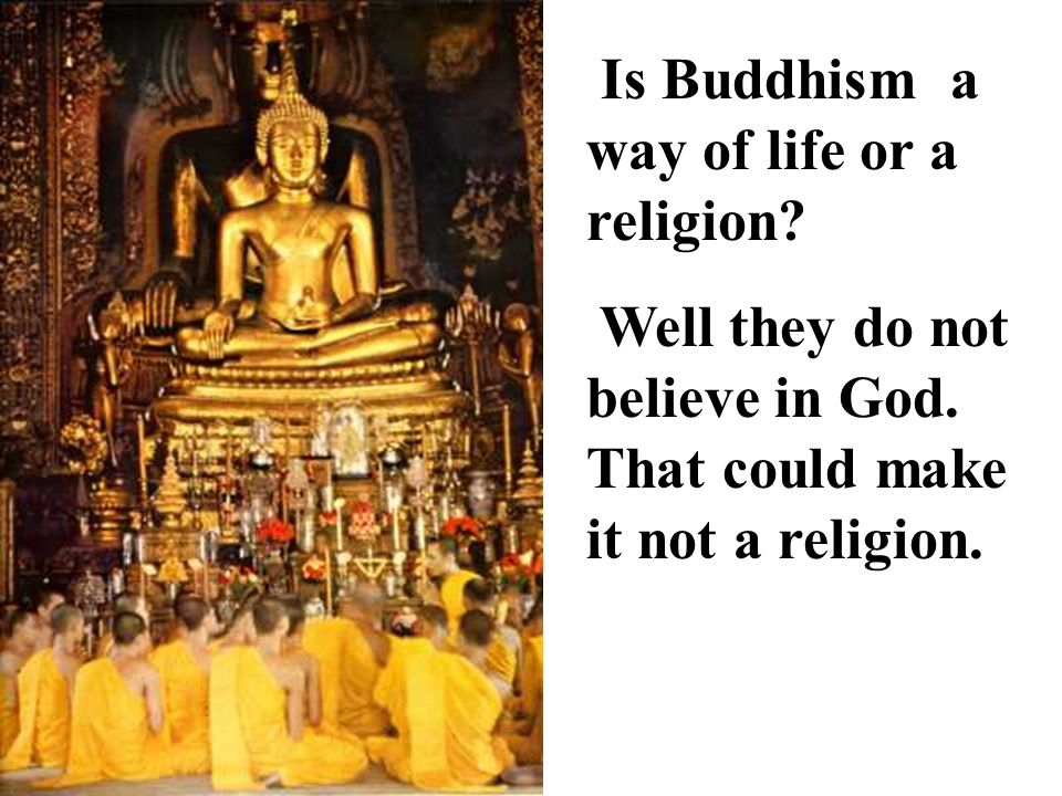 Is Buddhism a way of life or a religion. Well they do not believe in God.