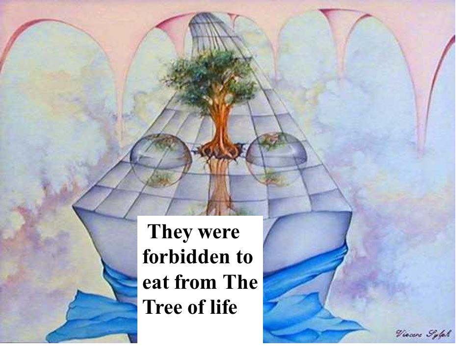 They were forbidden to eat from The Tree of life