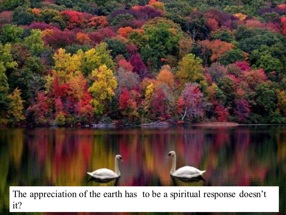 The appreciation of the earth has to be a spiritual response doesnt it?
