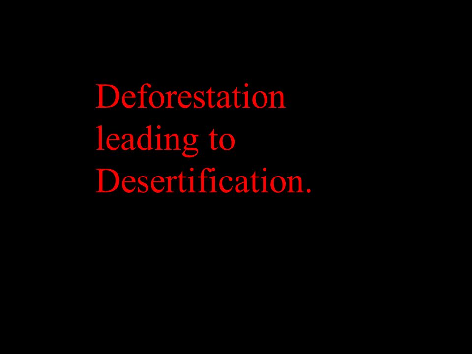 Deforestation leading to Desertification.