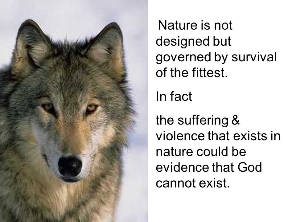 Nature is not designed but governed by survival of the fittest.