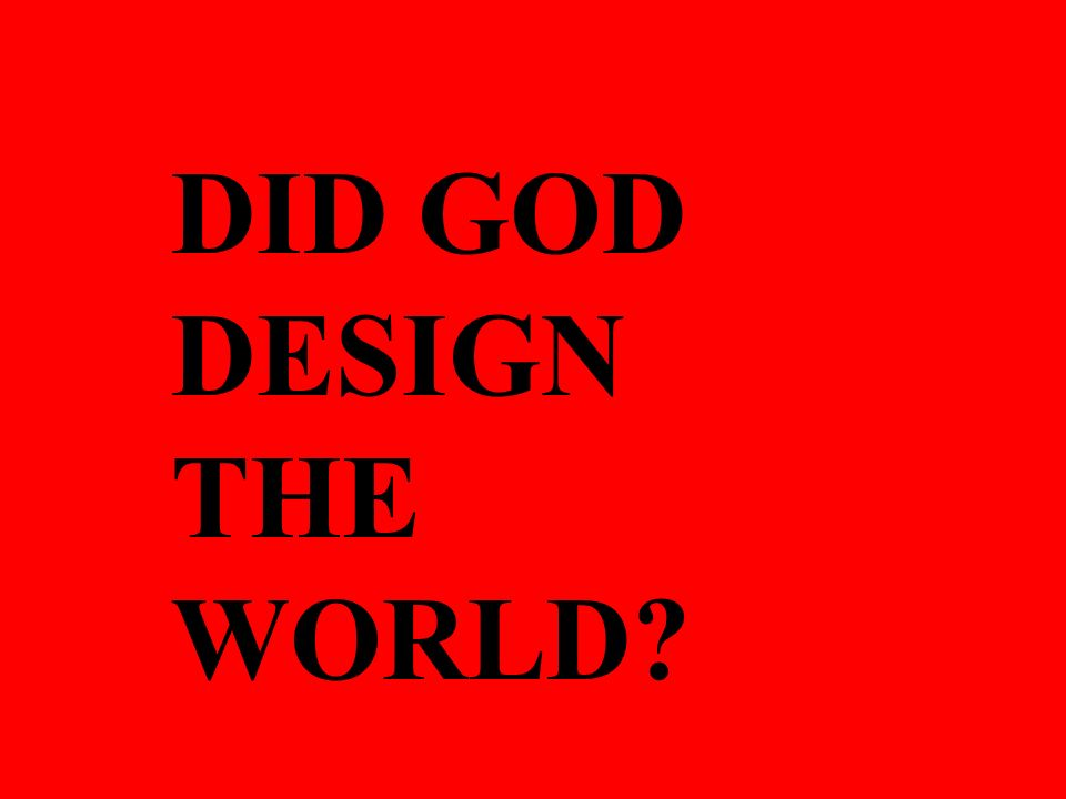 DID GOD DESIGN THE WORLD