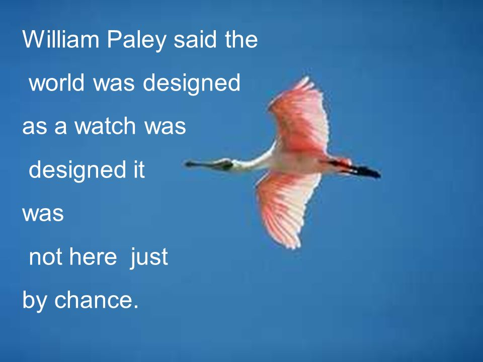 William Paley said the world was designed as a watch was designed it was not here just by chance.
