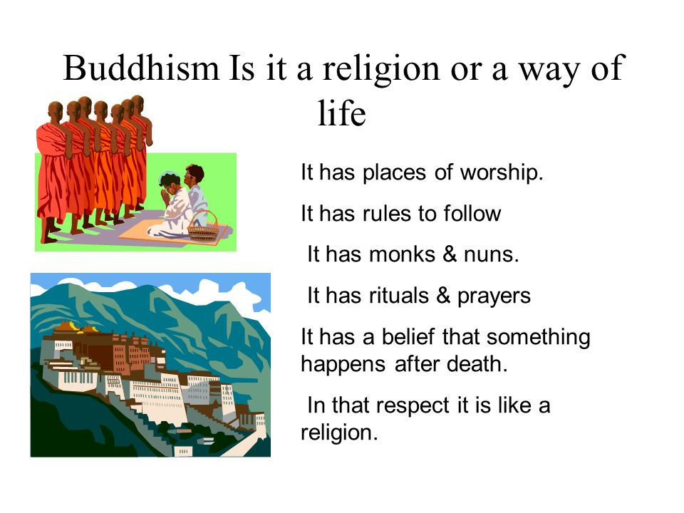 Buddhism Is it a religion or a way of life It has places of worship. It has rules to follow It has monks & nuns. It has rituals & prayers It has a bel