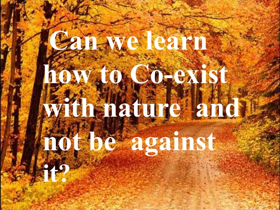 Can we learn how to Co-exist with nature and not be against it