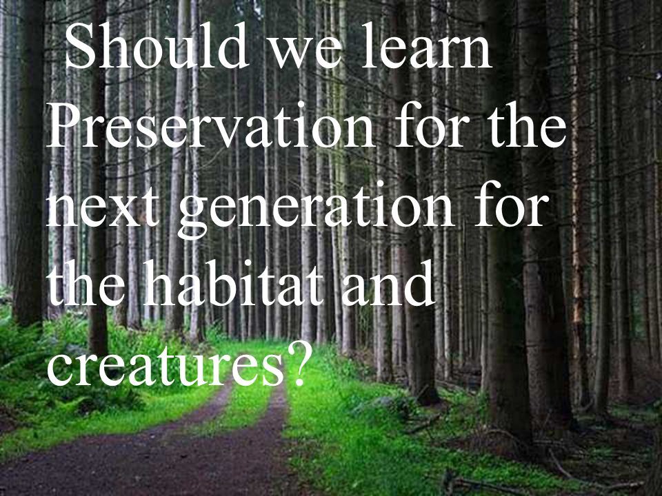 Should we learn Preservation for the next generation for the habitat and creatures?