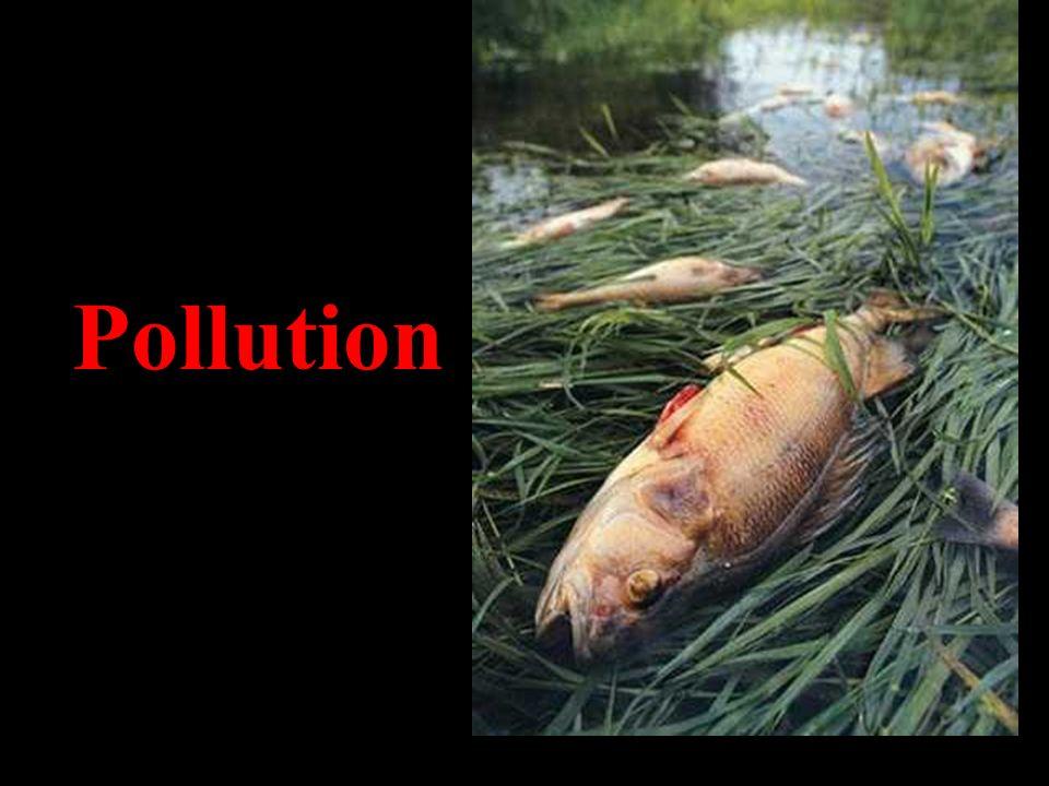 Pollution