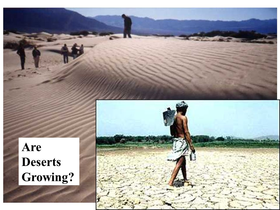 Can these people stop the desert ?