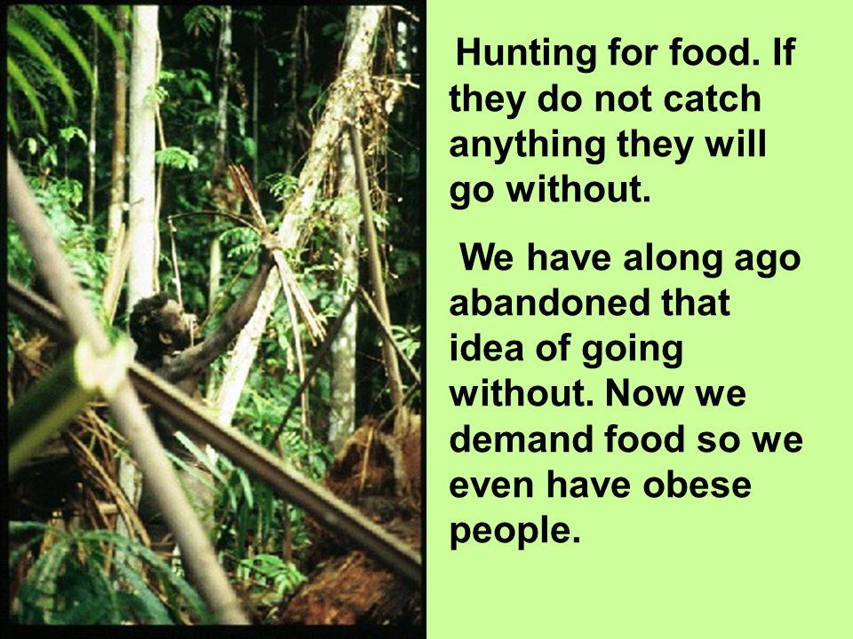 Hunting for food. If they do not catch anything they will go without. We have along ago abandoned that idea of going without. Now we demand food so we
