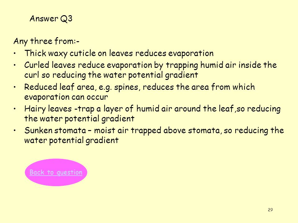 29 Answer Q3 Any three from:- Thick waxy cuticle on leaves reduces evaporation Curled leaves reduce evaporation by trapping humid air inside the curl