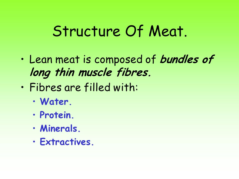 Structure Of Meat. Lean meat is composed of bundles of long thin muscle fibres. Fibres are filled with: Water. Protein. Minerals. Extractives.