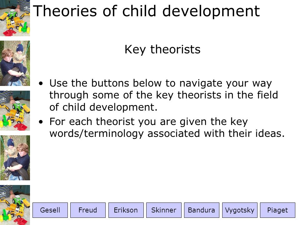 Theories of child development More on Skinner Skinner maintained that learning occurred as a result of the organism responding to, or operating on, its environment, and coined the term operant conditioning to describe this phenomenon.