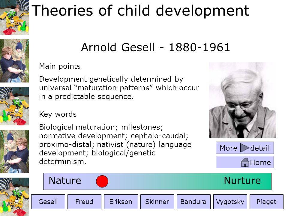 Theories of child development Arnold Gesell - 1880-1961 NatureNurture GesellFreudEriksonSkinnerBanduraVygotskyPiaget Key words Biological maturation;