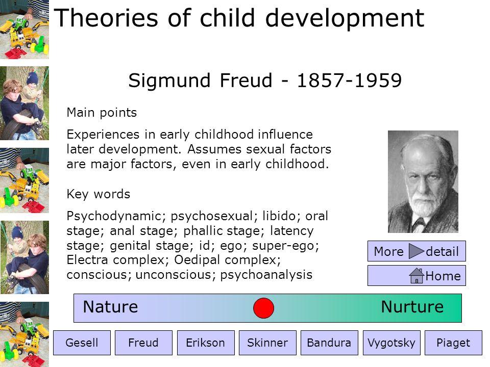 Theories of child development Erik Erikson - 1902-1994 Key words Psychodynamic; psychosexual; psychosocial; 8 development stages; identity; crises/dilemmas Main points Develops beyond Freuds ideas.