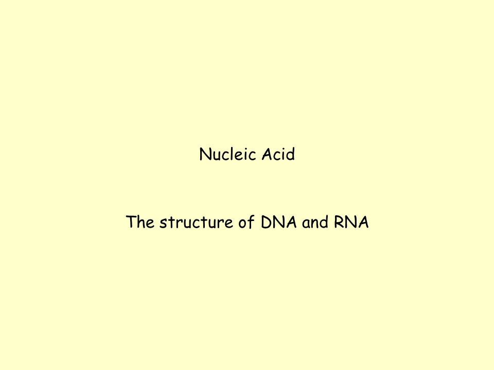 Nucleic Acid The structure of DNA and RNA