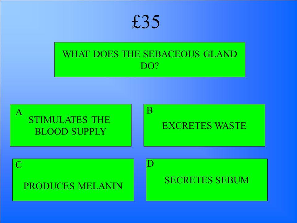 WHAT DOES THE SEBACEOUS GLAND DO? STIMULATES THE BLOOD SUPPLY PRODUCES MELANIN SECRETES SEBUM EXCRETES WASTE A B D C £35