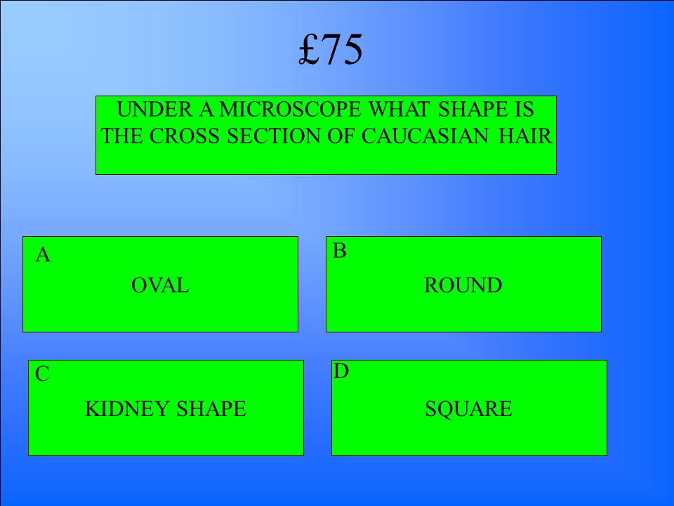 UNDER A MICROSCOPE WHAT SHAPE IS THE CROSS SECTION OF CAUCASIAN HAIR OVAL KIDNEY SHAPESQUARE ROUND A B D C £75