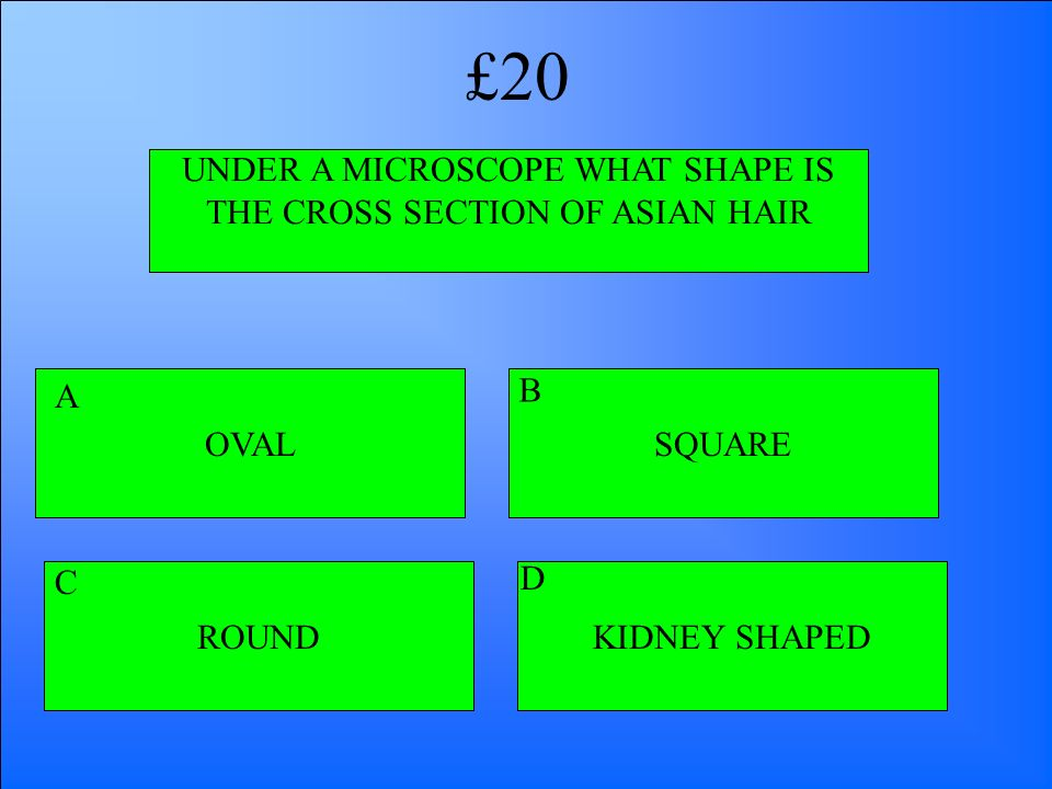 UNDER A MICROSCOPE WHAT SHAPE IS THE CROSS SECTION OF ASIAN HAIR OVAL ROUNDKIDNEY SHAPED SQUARE A B D C £20