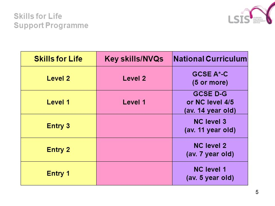 Skills for Life Support Programme 5 Skills for Life National CurriculumKey skills/NVQs Level 2 GCSE A*-C (5 or more) Level 1 Entry 2 Entry 3 Entry 1 Level 1 GCSE D-G or NC level 4/5 (av.