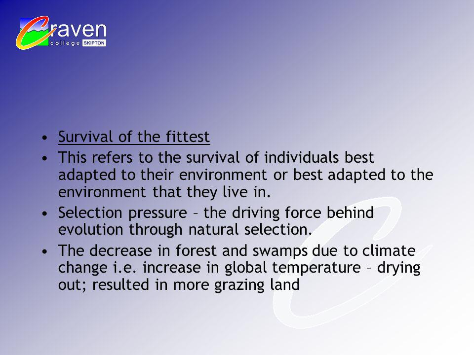 Survival of the fittest This refers to the survival of individuals best adapted to their environment or best adapted to the environment that they live