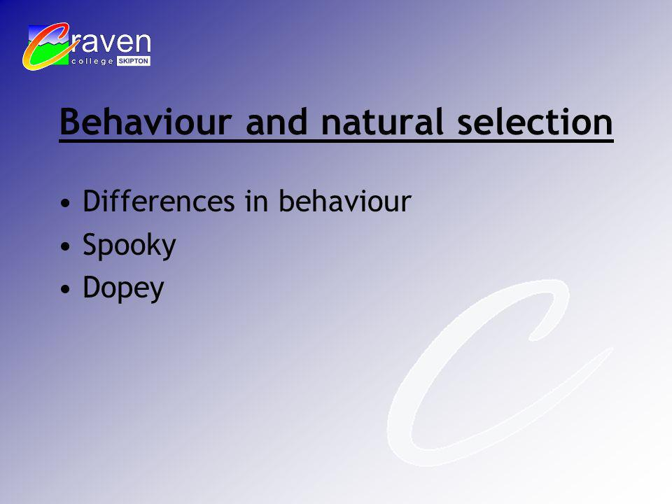 Behaviour and natural selection Differences in behaviour Spooky Dopey