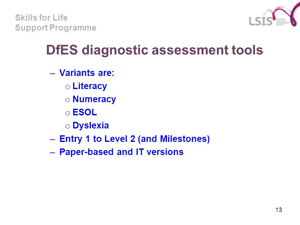 Skills for Life Support Programme 13 DfES diagnostic assessment tools –Variants are: o Literacy o Numeracy o ESOL o Dyslexia –Entry 1 to Level 2 (and
