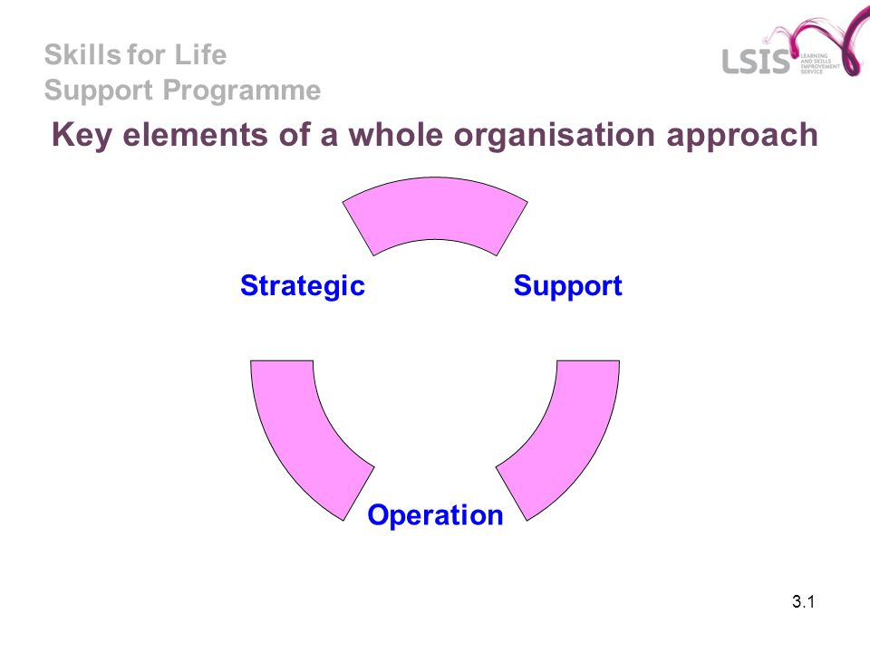 Skills for Life Support Programme 3.1 Key elements of a whole organisation approach Support Operation Strategic