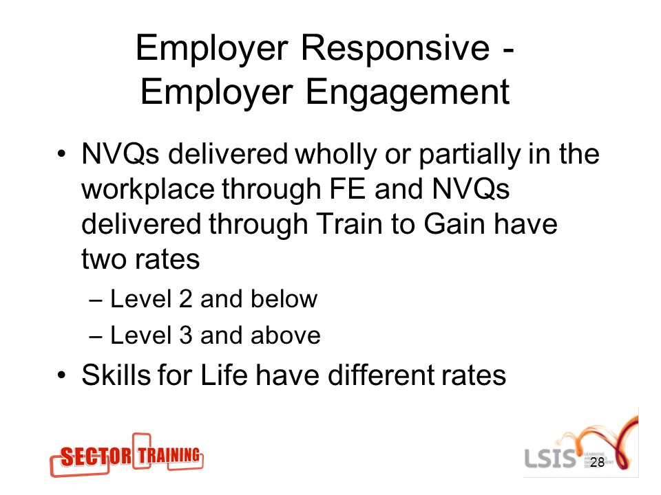 28 Employer Responsive - Employer Engagement NVQs delivered wholly or partially in the workplace through FE and NVQs delivered through Train to Gain have two rates –Level 2 and below –Level 3 and above Skills for Life have different rates