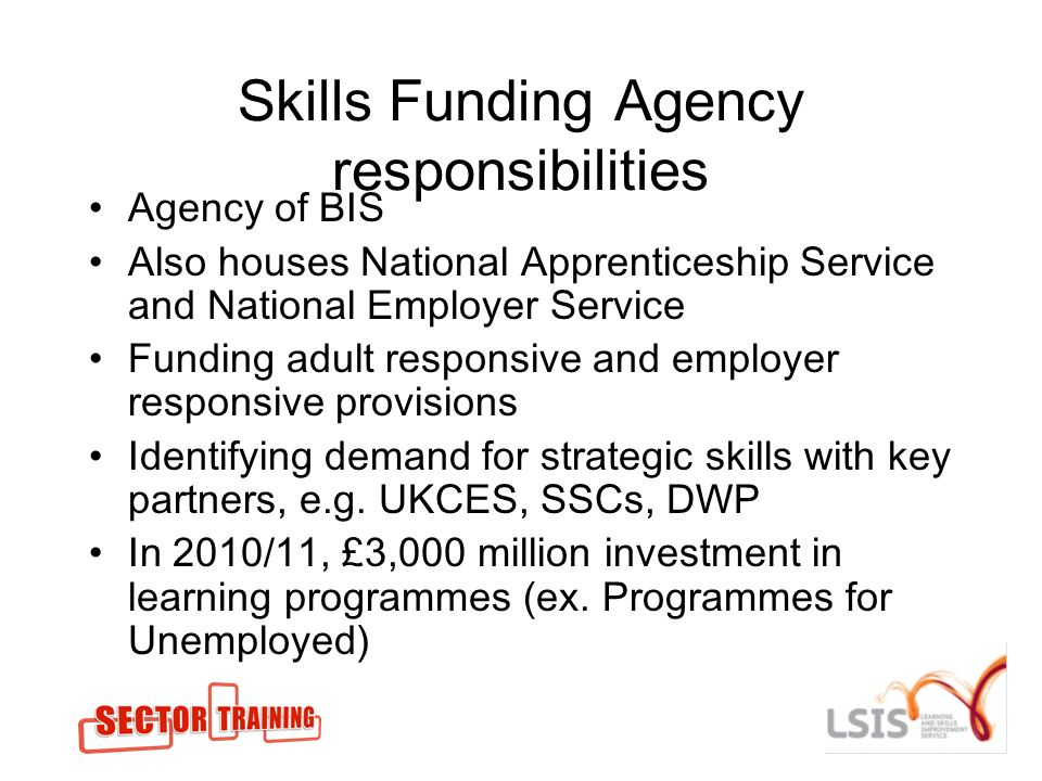 Skills Funding Agency responsibilities Agency of BIS Also houses National Apprenticeship Service and National Employer Service Funding adult responsive and employer responsive provisions Identifying demand for strategic skills with key partners, e.g.