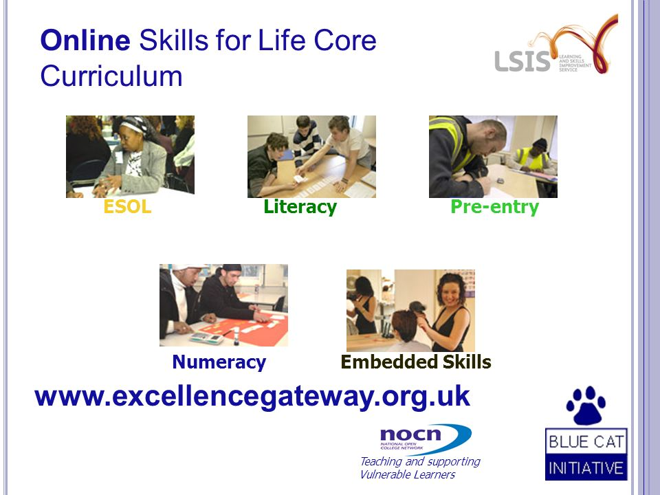Online Skills for Life Core Curriculum ESOL Literacy Pre-entry Numeracy Embedded Skills www.excellencegateway.org.uk Teaching and supporting Vulnerable Learners